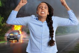 Interesting Historical Reasons of Why It is Called Lemon Law