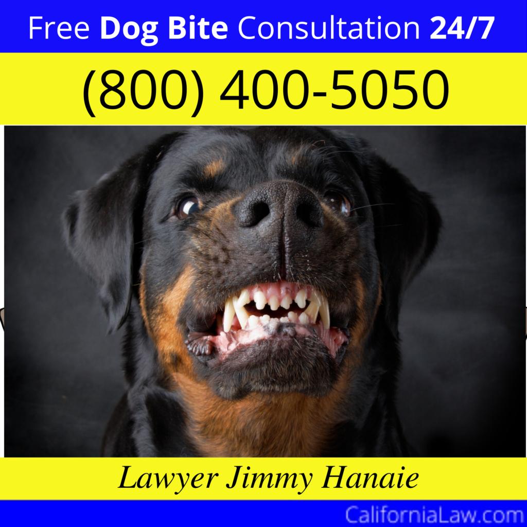Alameda Wrongful Termination Lawyer
