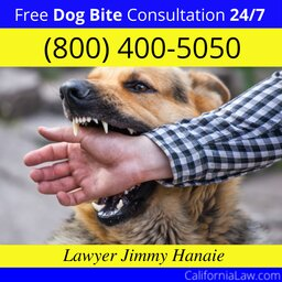 Anderson Dog Bite Lawyer CA