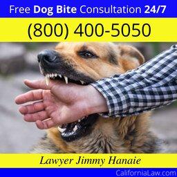 Angelus Oaks Dog Bite Lawyer CA