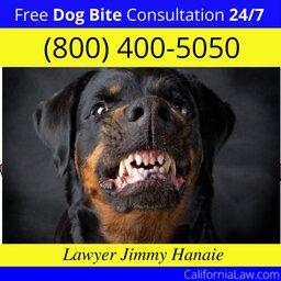 Best Dog Bite Attorney For Aromas