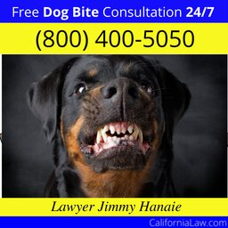 Best Dog Bite Attorney For Forest Knolls