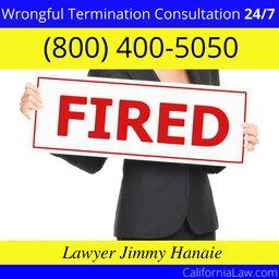 Wrongful-Termination