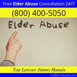 Badger Elder Abuse Lawyer CA