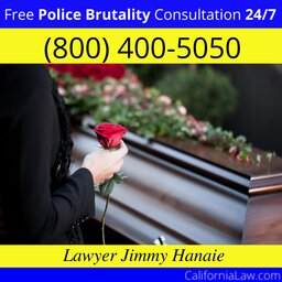 Best Police Brutality Lawyer For Red Bluff