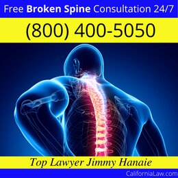 Best Caruthers Broken Spine Lawyer