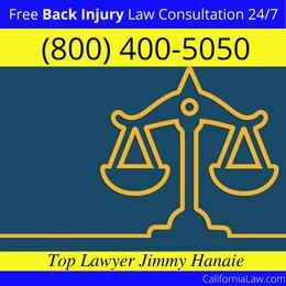 Best Farmersville Back Injury Lawyer