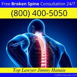Best Hamilton City Broken Spine Lawyer
