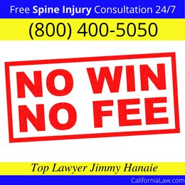Best Sequoia National Park Spine Injury Lawyer