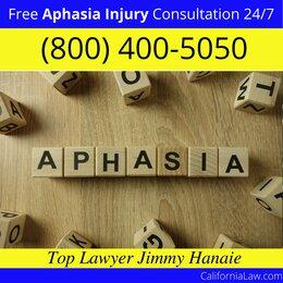 Best Studio City Aphasia Lawyer