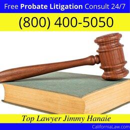 Half Moon Bay Probate Litigation Lawyer CA