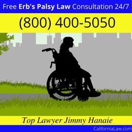 Los Gatos Erb's Palsy Lawyer