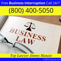 Mono Hot Springs Business Interruption Lawyer