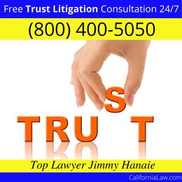 Rumsey Trust Litigation Lawyer CA