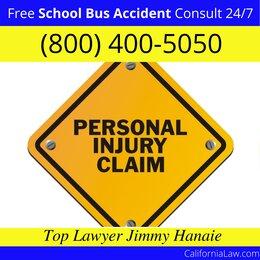 Tahoe Vista School Bus Accident Lawyer CA