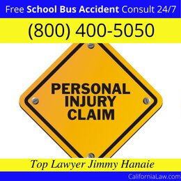 Topaz School Bus Accident Lawyer CA