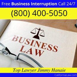 Vernalis Business Interruption Lawyer